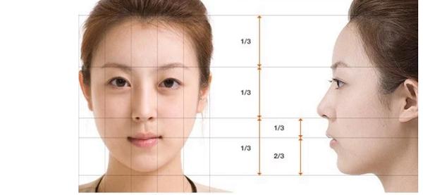 Kích thước có tỷ lệ chuẩn của khuôn mặt